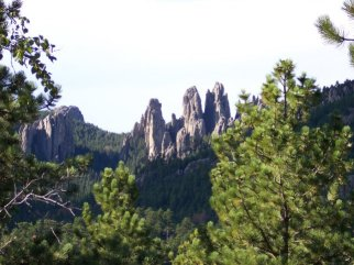needles along the needles highway