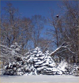 snowsmall