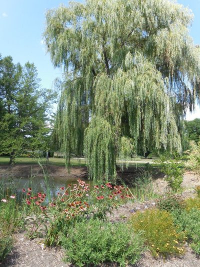 Iowa Arboretum, Madrid Iowa | Biker Chick News